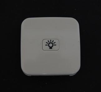 Busch und Jäger Wippe mit Lichtsymbol weiß 2520-2